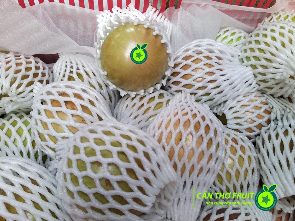 vu-sua-can-tho-fruit-xuat-khau (5)
